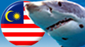 "Malaysia's new task force to target online gambling ""sharks"""