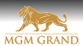 SWAT team stands down after MGM Grand suicide; robber shot dead at Rio