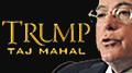 Trump CEO asks Icahn to fund Taj Mahal through Q2 2015