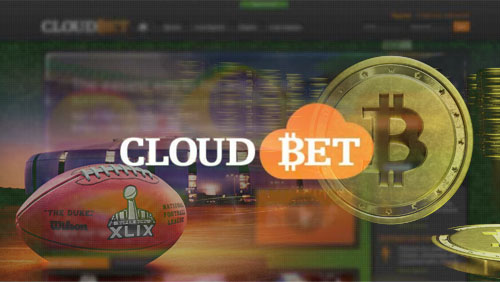 The Biggest Bets on the Super Bowl can Only be Placed in Bitcoin