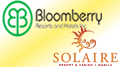 Bloomberry posts $91m profit thanks to full year of Solaire contributions