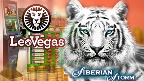 LeoVegas£570K Online Slots Winner Wants to Set Up His Own Betting Business