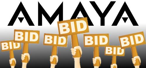 amaya-betstars-domain-purchases