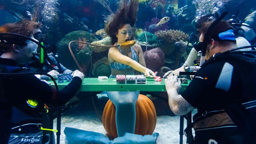 How Should Veterans be Honoured: Underwater Poker or a Blowjob?