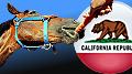 california-online-poker-bill-horse-carrot-thumb