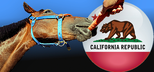 california-online-poker-bill-horse-carrot