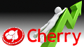 Cherry's online business up 91% following transformative year of acquisitions