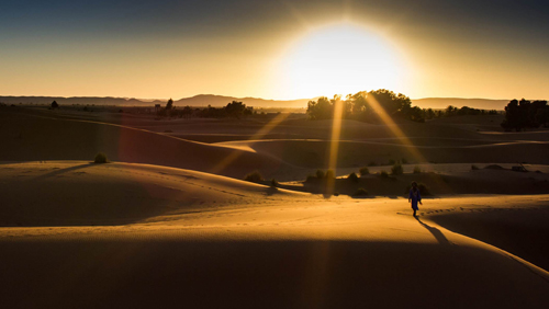 Online gambling industry shows support for charity; King to run 150 miles in the Sahara for Mencap