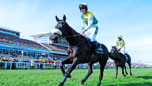 grand-national-2016-many-clouds-bids-for-back-to-back-wins