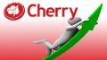 Cherry online revenue rises 118% in Q1; Yggdrasil revenue spikes 519%