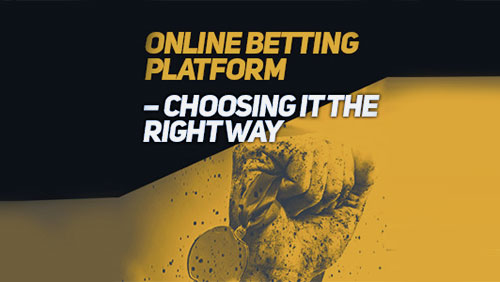 Online betting platform – choosing it the right way.