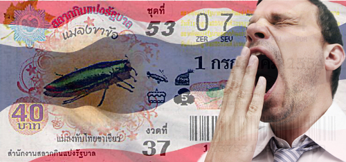 thailand-lottery-not-worth-playing