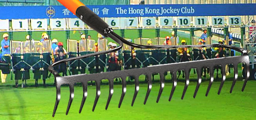 Errant rake forces Hong Kong Jockey Club to void first race in 132 years