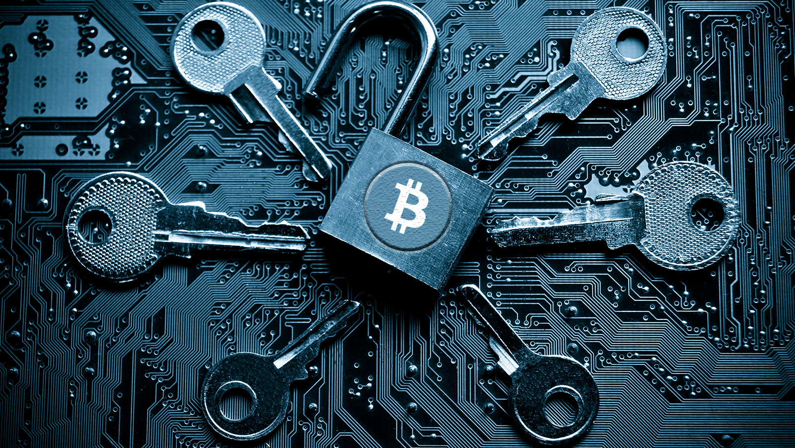 Bitcoin exchange BTC-e falls victim to DDoS attack