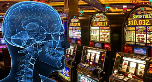 Problem gamblers' brains light up at sight of gambling imagery