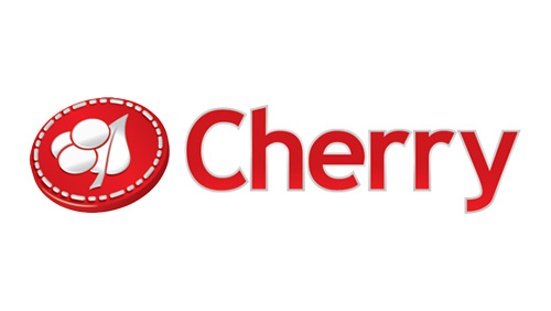 Anders Holmgren appointed CEO of Cherry AB (publ)