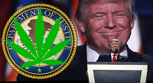 Recreational Marijuana Laws Under Threat From Justice Department