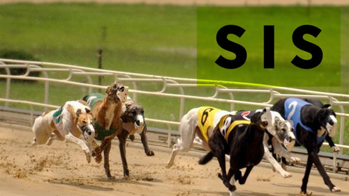 SIS signs greyhound rights deals with Doncaster and Harlow