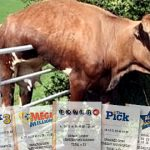 Lotteries no longer guaranteed cash cows for US states