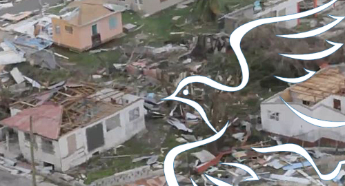 barbuda-hurricane-irma-relief-effort