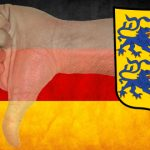 Schleswig-Holstein vote dooms Germany's new gambling treaty