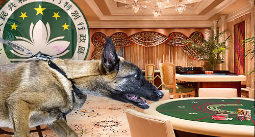 macau-tight-leash-casino-junket-operators