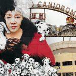 Angela Leong: I'll adopt Macau Canidrome's 600 greyhounds