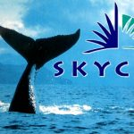 SkyCity Entertainment hails return of Asian gambling whales