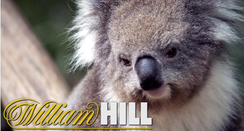 william-hill-australia-writedowns