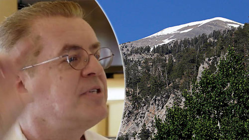 Sports handicapper Dave Malinsky falls to death during hike
