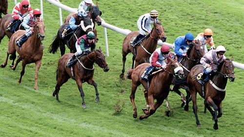 Matrix Holdings to build horse racing complex in Vietnam