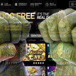 New Jersey hulk-smashes online gambling revenue record