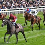 Matchbook to sponsor the Yorkshire Cup