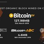 Big blocks, organic growth and Bitcoin SV