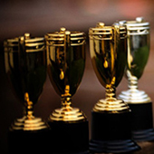 Choosing the winners of 7 categories at the WSOP' First Fifty Honors'