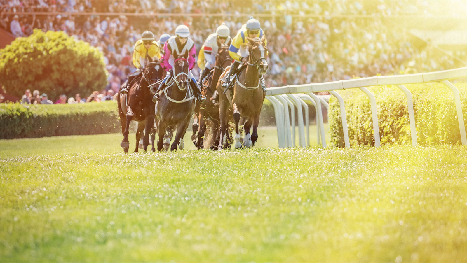 The Mouthpiece: A sea change for seabiscuit?