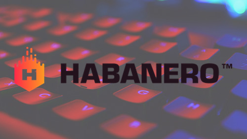 Habanero agrees ORYX Gaming integration
