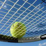 Wimbledon Men's & Women's betting preview