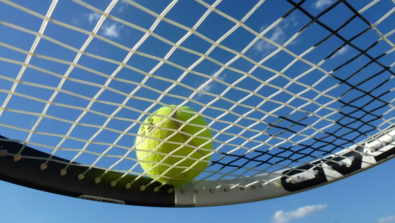 Wimbledon Men's & Women's betting preview