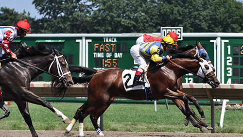 Monmouth Park given a reprieve in sports league lawsuit