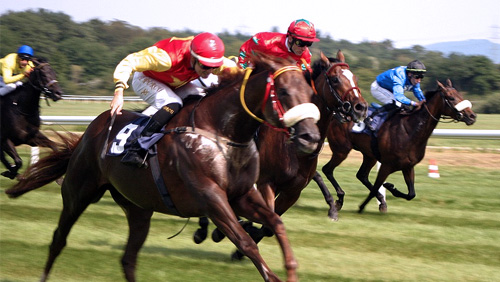Horse racing betting odds now on Planetwin365