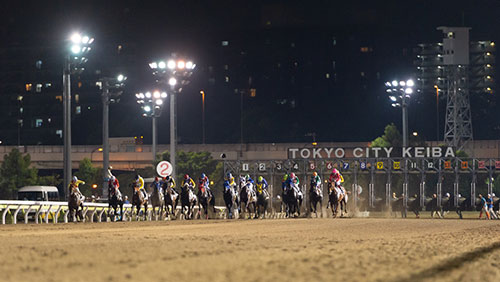 sky-racing-world-launches-japan-nar-simulcasting