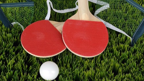 table-tennis-a-surprising-new-sports-book-favorite
