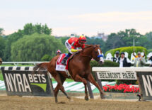 belmont-stakes-to-be-first-not-last-race-of-the-triple-crown