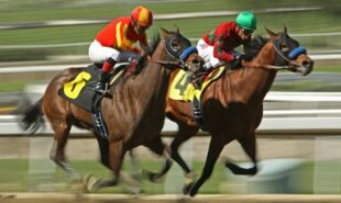bodog-puts-up-lines-for-tomorrows-virtual-kentucky-derby