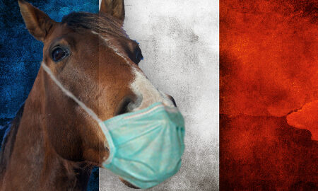 france-horseracing-suspended-covid-19