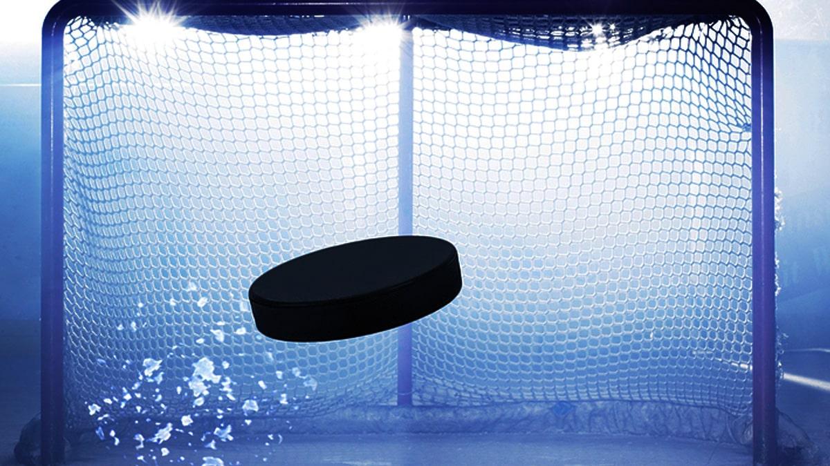 nhl-hockey-return-could-see-some-teams-meet-in-vegas