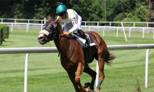 tote-superpools-launched-for-every-race-at-royal-ascot