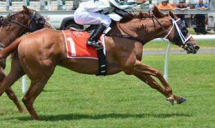 NSW-jockey-Adam-Hyeronimus-guilty-for-illegal-wagers