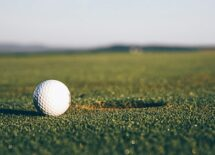 Johnson-leads-odds-to-win-the-US-Open